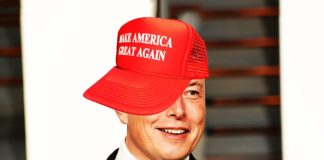 Top 3 Reasons Why Elon Musk Respects Donald Trump